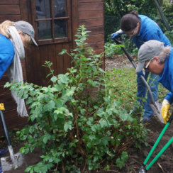 Universum Bremen Day of Caring